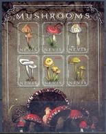 H61- Nevis 2010 Mushrooms S/Sheet. - Funghi