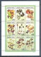 H68- Comores 1998 Mushrooms S/Sheet - Mushrooms