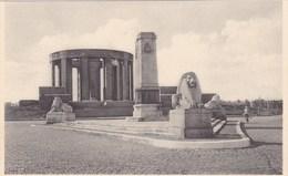 Nieuwpoort, Ijzergedenkteken Voor Koning Albert (pk47863) - Nieuwpoort