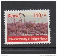2013 Kenya Flamingo (from Sheet Of 25 Independence Stamps) - Much Cheaper Than Buying Sheet!!! - Flamingo