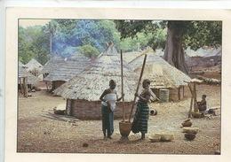 Afrique : Couleurs Du Sénégal - Préparation Du Repas (n°1017) - Sénégal