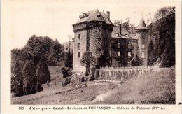 15 L'Auvergne - Cantal - Environs De FONTANGES - Château De Palmont - France