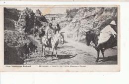 Abyssinie - Route Du Choa ( Environ D' Harrat ) - Cartes Mignonnette  De  13X7 Cm  : Achat Immédiat - Ethiopia
