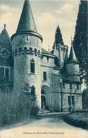 D1321 CPA Chateau De Domancy - France