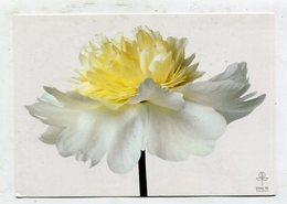 FLOWER - AK 326474 Pfingstrose - Fleurs