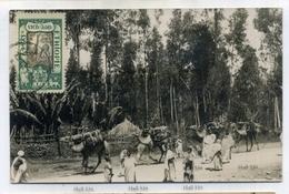 Ethiopia Addis Ababa Postcard By Jos Steinlehner Philatelic Usage Camels In Village - Ethiopia