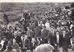 Saintes Maries De La Mer - La Procession Du 25 Mai ( 1963 ) - Saintes Maries De La Mer