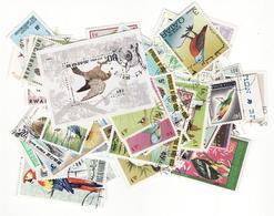LOT  123 Oiseaux  D79 - Collections, Lots & Series