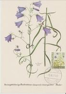 Carte Maximum Fleurs 1960 Bleuets 302A - Cartoline Maximum