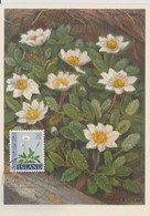 Carte Maximum Fleurs 1964 Dryade 336 - Cartoline Maximum