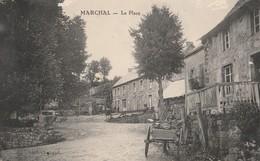 CPA  15   MARCHAL   LA PLACE ATTELAGE DE MULE - France