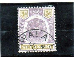 B - 1895 Malesia - Selangor - Tigre - Selangor