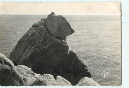 Le POULIGUEN - La Grande Côte - L' Ours Polaire - Format CPM - 2 Scans - Bears