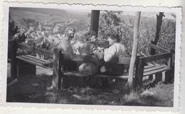Belvédère Et Vue De Hamoir - 1946 - 2 Photos Originales Format 6.5 X 11 Cm - Lieux