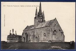 29 SAINT-JEAN-TROLIMON Pointe De Penmarch, église Et Calvaire De Tronoën ; Vaches - Saint-Jean-Trolimon