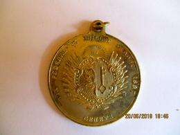 Suisse: Médaillette Tir Fédéral, Genève 1887 - Fichas Y Medallas