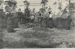 Environs De NUITS SAINT GEORGES BEVY Charbonniers En Forêt - Frankreich