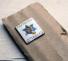 1940s Judaica Jewish Zionist Hungary Enamel Pin - RARE - Associations
