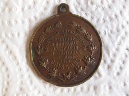 Medaille Concours De Musique Et De Fanfares 8 Juin 1879 Soissons. - France