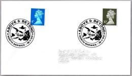 AVES ESTRIGIFORMES - ORDER STRIGIFORMES. North Berwick 2000 - Owls