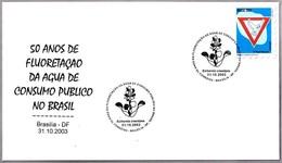 FLUORIZACION DEL AGUA POTABLE - Fluoridation Of Drinking Water. Brasilia DF 2003 - Química
