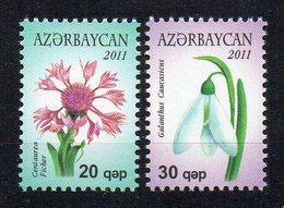 AZERBAIDJAN - FLEURS - FLOWERS - 2011 - - Azerbaïjan