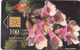 BULGARIA - Haberlea Rhodopensis Friv., Bulfon Telecard 100 Units, Chip GEM5, 12/97, Used - Bulgaria