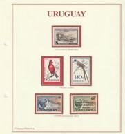 URUGUAY - Uruguay