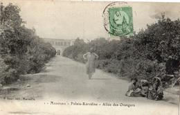 TUNISIE MANOUBA PALAIS KEREDINE ALLEE DES ORANGERS - Tunisie