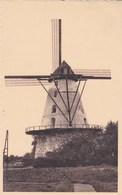Boechout, De Molen, Moulin, Windmill (pk47944) - Boechout