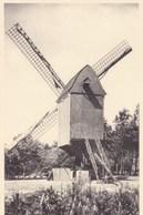 Kasterlee, Oude Standaardmolen (pk47945) - Kasterlee