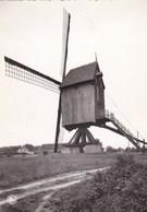 Keerbergen, De Molen (pk47948) - Keerbergen