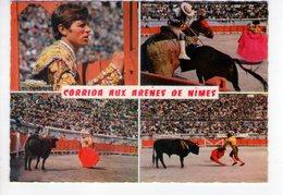 U2833 Postcard: CORRIDA AUX ARENES DE NIMES + TORO, Taureau, Bull _ NOT WRITED - Corrida