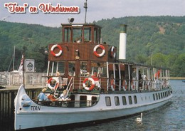 Postcard Tern On Windermere Pleasure Cruiser / Ship [ John Hinde ]  My Ref  B22671 - Ships