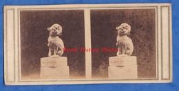 Photo Ancienne Stéréo - Vers 1870 - Sculpture Portrait-charge Lechat Agent De Change - Sculpteur Jean-Pierre Dantan - Photos Stéréoscopiques