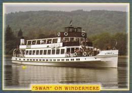 Postcard Swan On Windermere Pleasure Cruiser / Ship [ John Hinde ]  My Ref  B22672 - Ships