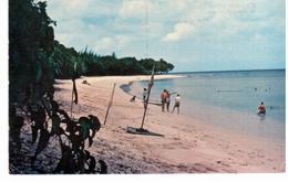 ~ Barbados - Saint James - Saint James Coast - Barbades