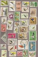 Lot Marken Vögel Gest. - Collections, Lots & Series