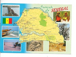 SENEGAL Souvenir Carte Du Pays / CPM Voyagée 1997 / Légère Pliure !! / 3 T Dont 19 ème DAKAR-AGADES-DAKAR - Sénégal