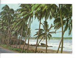 SRI LANKA  : BEACH SCENE / CPM N° G 165 Voyagée 1980 / T. ROTARY De 1979 / Bon état - Sri Lanka (Ceylon)