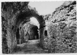 FREJUS AMPHITHEATRE ROMAIN - Frejus