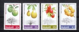 Malawi 1993**,  Tropische Früchte, Sukkulente / Malawi 1993, MNH, Tropical Fruits, Succulent - Sukkulenten