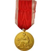 France, Société Industrielle De Rouen, Médaille, Non Circulé, Chabaud - Autres