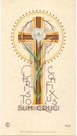 Devotie Devotion - Profession Religieuse Monastère Augustines Soeur Marie Véronique ( Marguerite Mestdag ) Menin 1950 - Unclassified