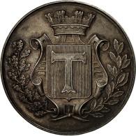 France, Médaille, Comice Agricole De L'Arrondissement De Toul, 1897, SUP+ - Altri