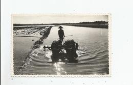 EX INDOCHINE (VIET NAM) CARTE PHOTO LE TRAVAIL DE BUFFLES - Viêt-Nam
