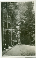 Ellecom 1955; Middachterlaan - Gelopen. (Jos Pé - Arnhem) - Paesi Bassi