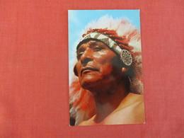 Indian  Warrior   Ref 2999 - Native Americans
