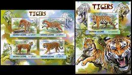 SIERRA LEONE 2017 - Tigers - Mi 8300-3 + B1189 - Sierra Leone (1961-...)