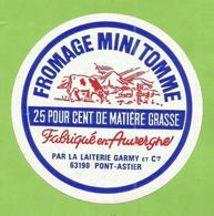 PUY DE DOME ETIQUETTE FROMAGE MINI TOMME GARMY PONT ASTIER VACHE T  JN181 - Fromage